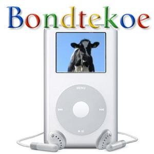 bondtekoe_new